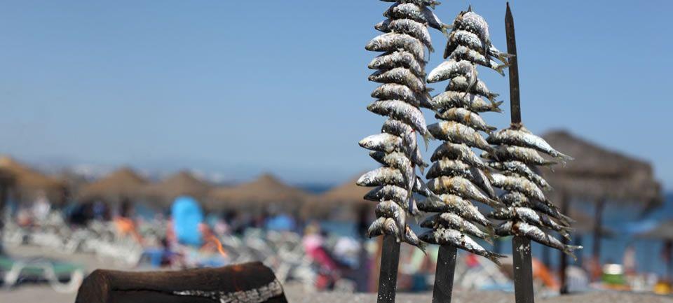 Sol Playa Fuengirola